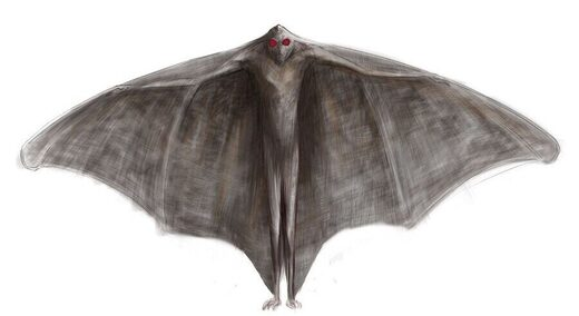 Seven-Foot-Tall Mothman Sighting in Chicago