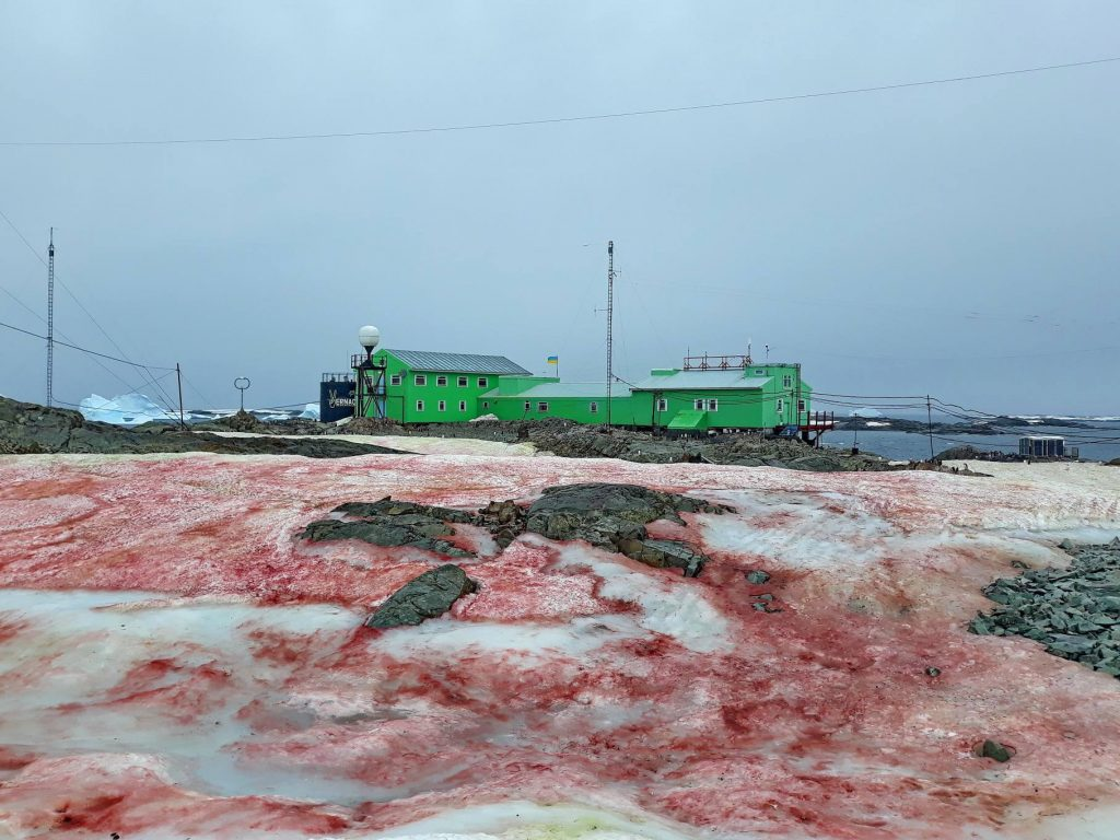 Snow turns blood red at Ukrainian Antarctic station